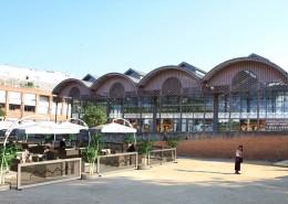 Montaje vista plaza albero4
